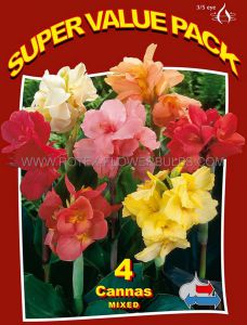 SUPER VALUE PKGS. CANNA TALL 'MIX' 3-5 EYE (15 PKGS.X 4)
