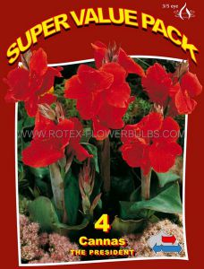 SUPER VALUE PKGS. CANNA 'THE PRESIDENT' 3-5 EYE (15 PKGS.X 4)