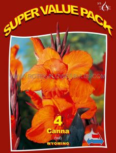 SUPER VALUE PKGS. CANNA 'WYOMING' 3-5 EYE (15 PKGS.X 4)