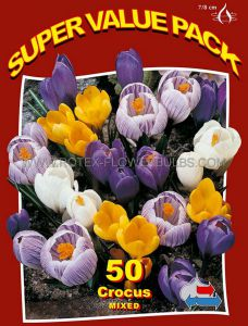 SUPER VALUE PKGS. CROCUS 'MIX' 7/8 CM. (20 PKGS.X 50)