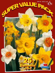 SUPER VALUE PKGS. DAFFODIL (NARCISSUS) 'MIX' 12-14 (10 PKGS.X 25)