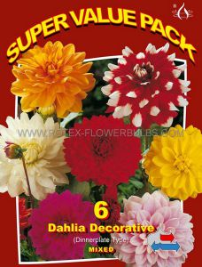 SUPER VALUE PKGS. DAHLIA DECORATIVE 'MIX' II (20 PKGS.X 6)
