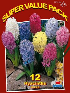 SUPER VALUE PKGS. HYACINTHUS ORIENTALIS 'MIX' 14/15 CM. (20 PKGS.X 12)