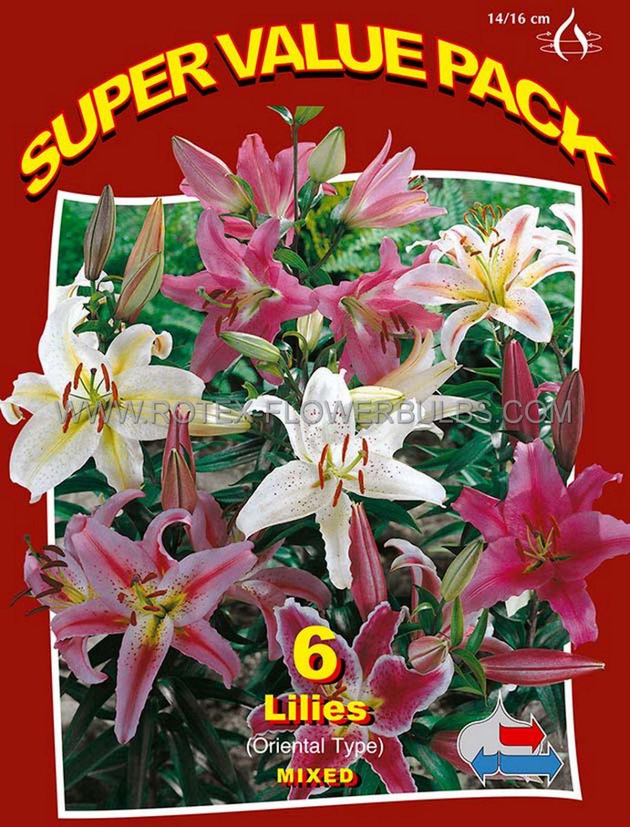 super value pkgs lilium oriental mix 1214 cm 20 pkgsx 6