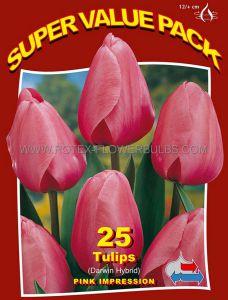 SUPER VALUE PKGS. TULIPA DARWIN HYBRID 'PINK IMPRESSION' 12/+ CM. (20 PKGS.X 25)