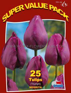 SUPER VALUE PKGS. TULIPA TRIUMPH 'NEGRITA' 12/+ CM. (20 PKGS.X 25)