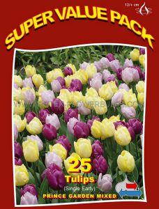 SUPER VALUE PKGS. TULIPA TRIUMPH 'PRINCE GARDEN MIX' 12/+ CM. (20 PKGS.X 25)